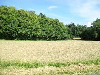 terrain à Soulaures (24)