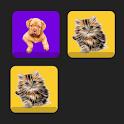 K-PetS ( ohh1 ) icon