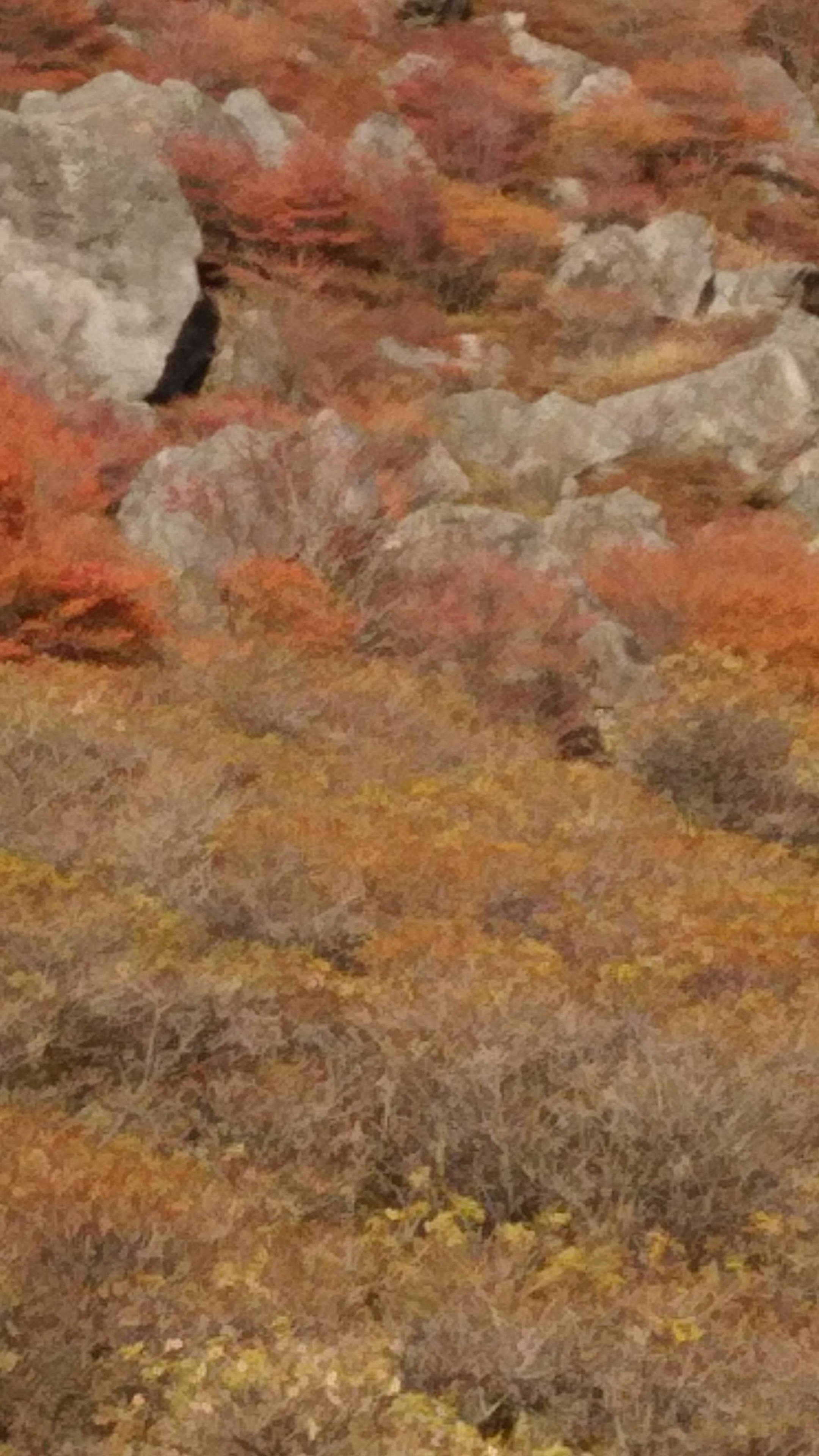 大岩の間の紅葉