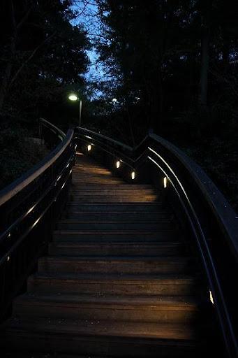 横浜 港の見える丘 公園 Yokohama Park