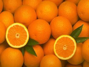 Fotografija: terapia orange 01