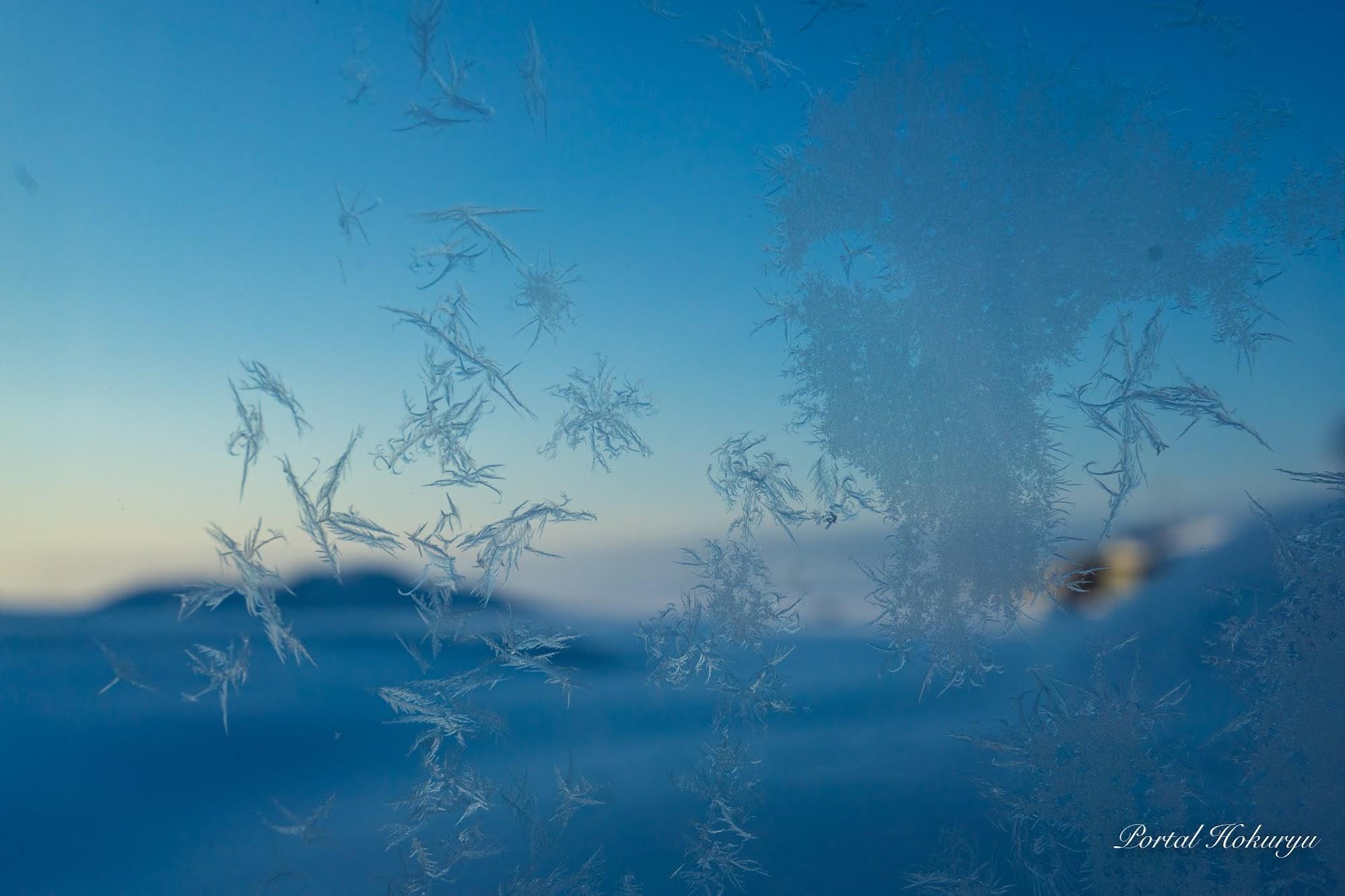 窓に描かれた氷アート