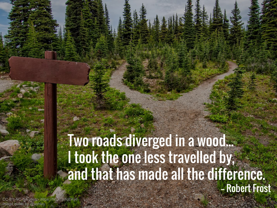Two roads diverged in the wood... I took the one less travelled by, and that has made all the difference. -- Robert Frost