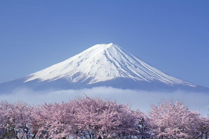 Image result for núi fuji