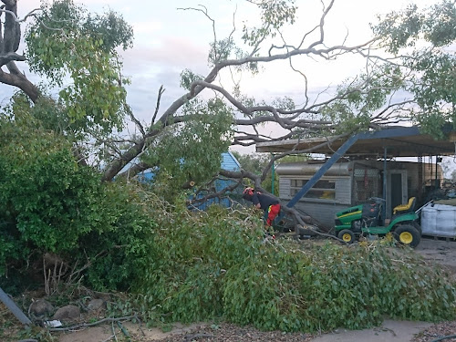 A large tree was uprooted at this Gurley Street, Bellata, property, crashing into a caravan, carport and fence. A Narrabri SES unit member can be seen helping clear this mess last night.