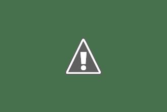 Photo: Myriophyllum spicatum (verde)  circondata da Azolla caroliniana in deterioramento evidenziato dalla colorazione rossastra.