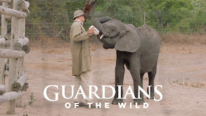 Guardians of the Wild thumbnail