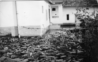 Photo: Alsó utca, Bödők Pál háza, a víz széthordta a farakást az udvarban.