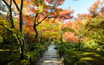 """Photo: This photo appeared in an article on my blog on Nov 24, 2013. この写真は11月24日ブログの記事に載りました。 """"Fall Foliage at Kyoto Arashiyama's Hokyo-in Temple (with a wigglegram)"""" http://regex.info/blog/2013-11-24/2343"""