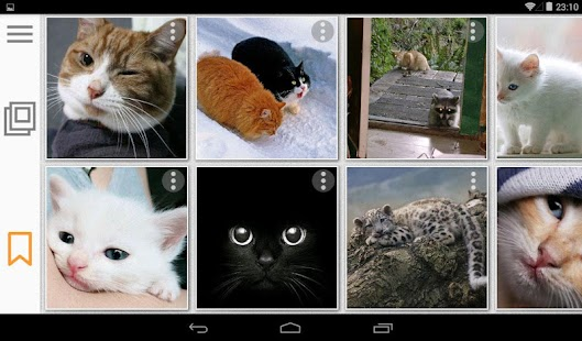 Cats Gallery - Pictures, GIFs and Memes - náhled