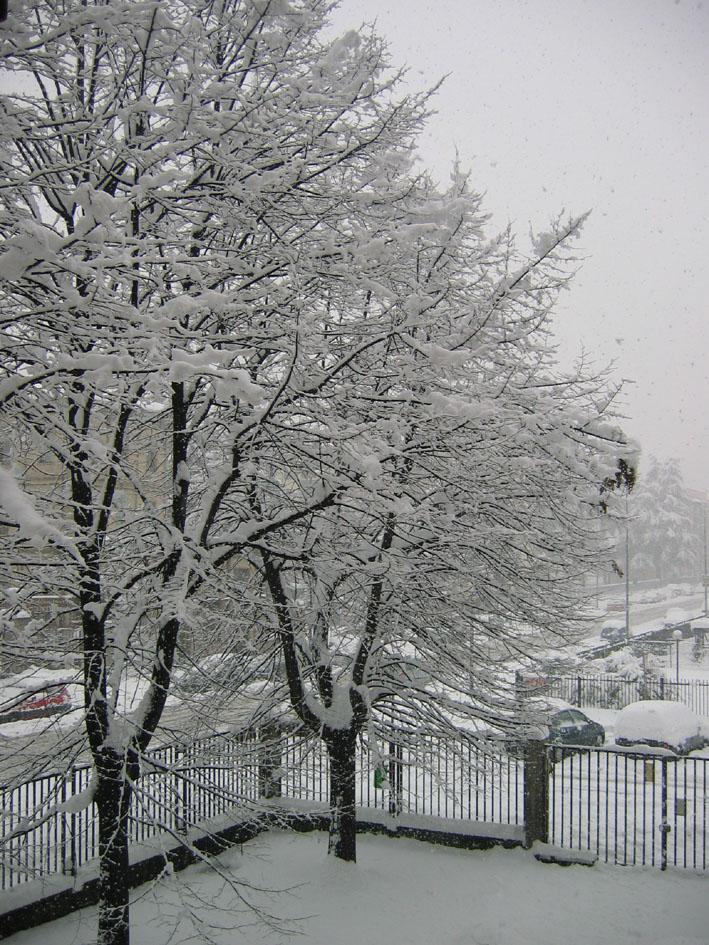 Nevicata  di archiviobesozzi