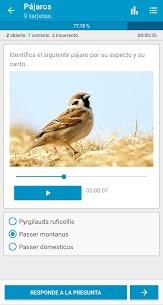 Flashcards App – Crea, Estudia, Aprende 2