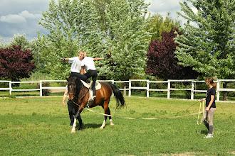 Photo: Terápiás lovastorna