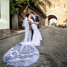 Wedding photographer Anastasiya Khaus (FiFi-House). Photo of 16.11.2013