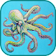 Octopus Wallpaper Art APK