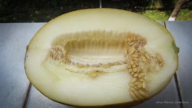 Photo: Pepene galben (Cucumis melo) - din Piata Agroalimentara din Mr.2 - 2016.08.30