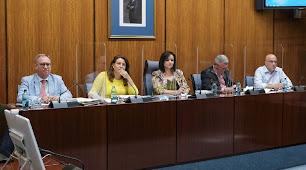 Carmen Crespo durante la comisión parlamentaria de Agricultura, Ganadería, Pesca y Desarrollo Sostenible.