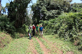 Photo: Starting uphill on the Umbwe Route