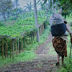 Pulang by Arief Wijayanto - People Portraits of Women