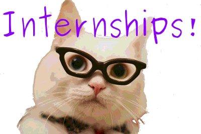 internships_cat.jpg