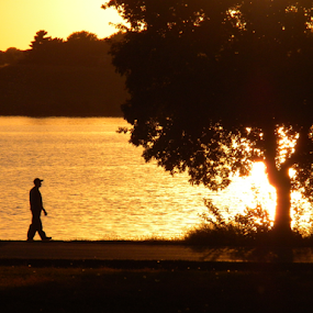 Going Fishing Silhouette by Gayle Mittan - People Family ( father and son, walking, sunset, fishing, tree, silhouette, shadows, evening, water, lake, people, yellows,  )
