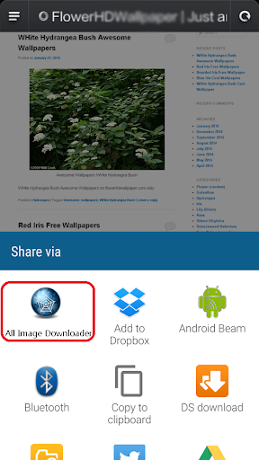 Image Downloader All - Search