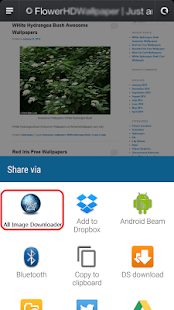 All Image Downloader - Search - náhled