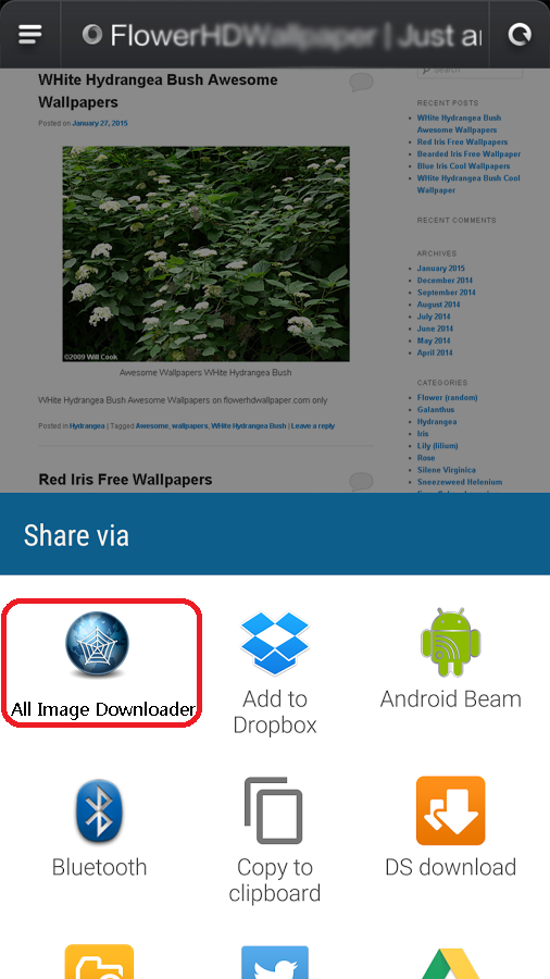 All Image Downloader - Search- screenshot