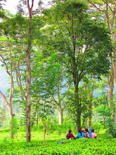 Photo: Tea Picking ladies having a tea break on the way to Nuwara Eliya.