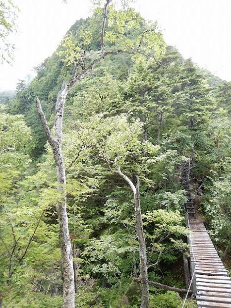 甲斐駒ヶ岳 thumbnails No.5