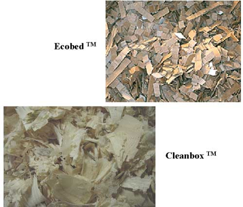 Cardboard (Ecobed tm) and large wood shavings (Cleanbox tm).