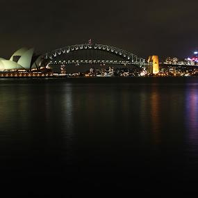 Sydney by Jill Wilson - City,  Street & Park  Vistas