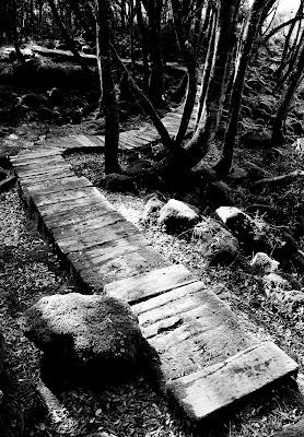 La prima strada di FabioMuscasFotografia