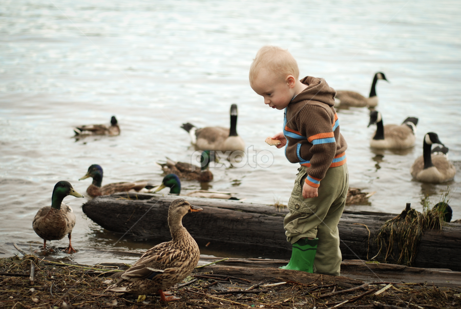 Face Off by Jason Weigner - Babies & Children Toddlers ( child, water, duck, pwcsummerfun, boy, , Emotion, portrait, human, people, Spring, springtime, outdoors, relax, tranquil, relaxing, tranquility )