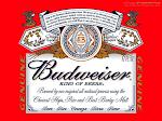 Anheuser-Busch Budweiser 16oz Aluminum
