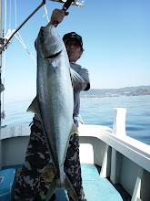 Photo: おーりゃー!とったどー!ヒラス8.2kgだー!どーだー!近海でとったどー!「あっぱれ!」