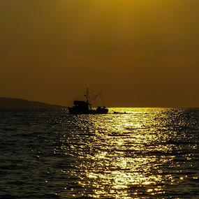 A ship on the sunset  by Alen Zita - Landscapes Sunsets & Sunrises ( croatia, sunset, adriatic, ship, sea )