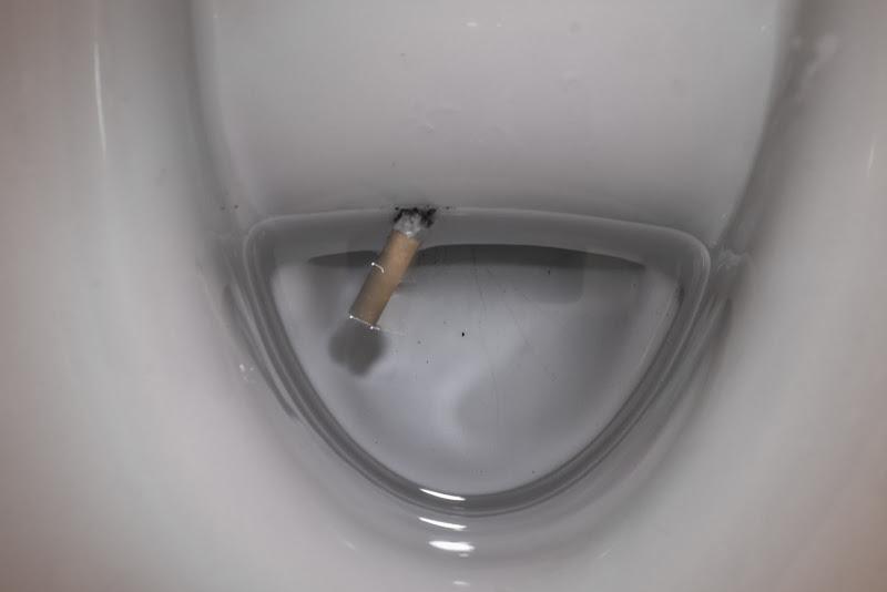 WC(icca) di gattopisa