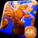 Underwater Jellyfish 4K Live icon