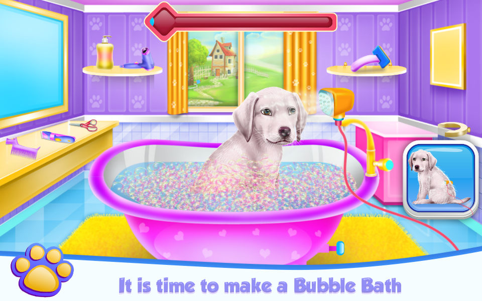 Labrador at the Doctor Salon- screenshot