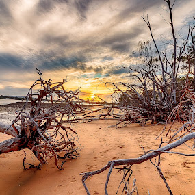 Sunset @ Coochiemudlo Island by Dom Del - Landscapes Sunsets & Sunrises ( water, sunset, coochiemudlo island )