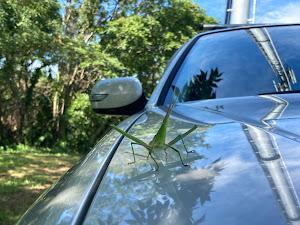 アウトバック2500 L-Style  のカスタム事例画像 FFunさんの2020年08月11日20:19の投稿