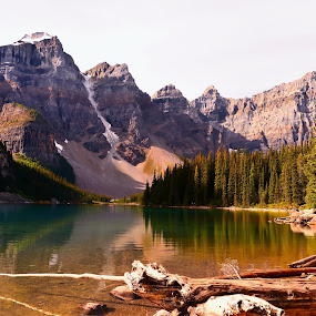 Moraine Lake by Joseph Law - Landscapes Waterscapes ( in banff national park, bushes, rocky mountains, reflections, trees, woods, moraine lake )
