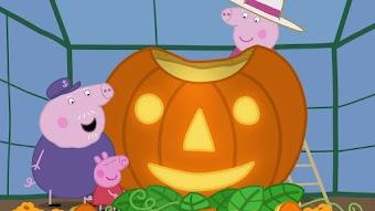 Pumpkin Competition