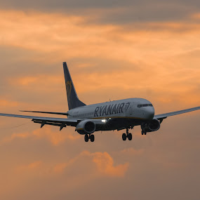 On Finals by James Booth - Transportation Airplanes ( finals, 737, landing, sunset, boeing )