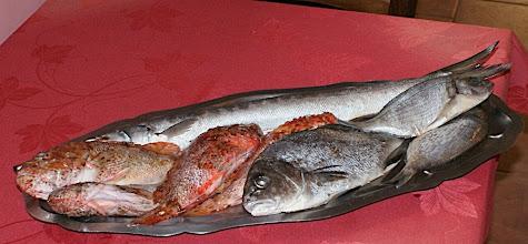 Photo: 12 h 40 Restaurant la voûte et ses poissons (rascasse)
