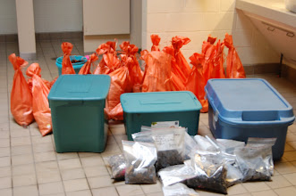 Photo: Collection of organics ready for shipment for floral and faunal analysis.  Lee Newsom, Pennsylvania State University, is the specialist called in to to examine much of the floral material.  This is a small part of the inventory from Salt Springs, Marion County, Florida.  The older levels are about 6,000 years old.  It was a cooperative project between the  US. Forest Service and National Park Service.  UF and FSU faculty and students also assisted in excavations.  We have two recent theses based on the materials from this site - bone tools (Julie Bryd) and lithics (Thadra Stanton).  Wet sites provide a wealth of information.