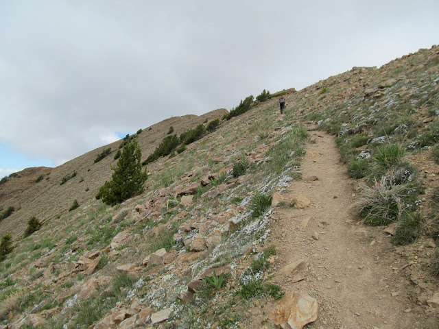 Final stretch of trail leading to the summit