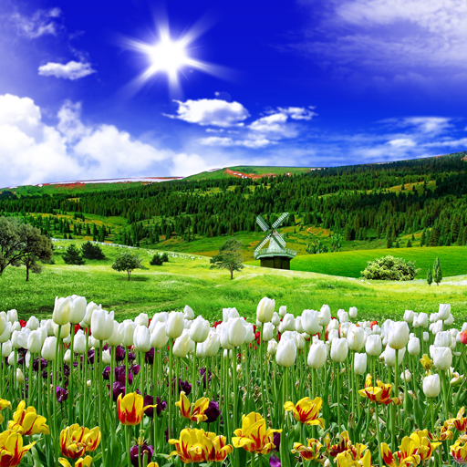 Spring Nature Live Wallpaper Apps On Google Play