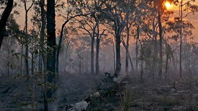 Photo: Day 2 - Fire near Ubirr © Ian Morris